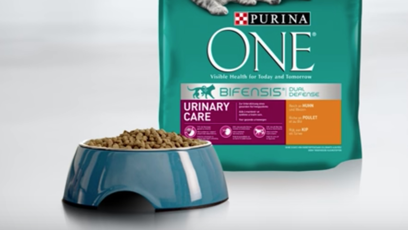 urinary tract care cat foods